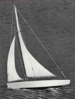 RC plachetnice Ace Racing Sloop