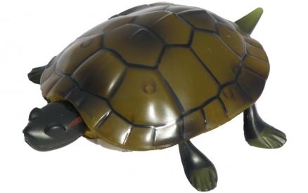 RC želva