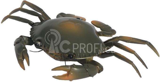 Krab na dálkové ovládání, hnědý